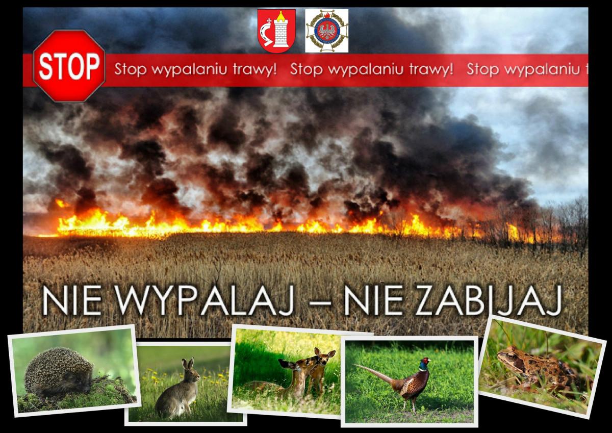 Plakat - wypalanie traw