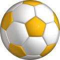Piłka halowa